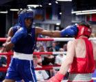 Сборные России и Кубы по боксу проведут показательную тренировку в Санкт-Петербурге